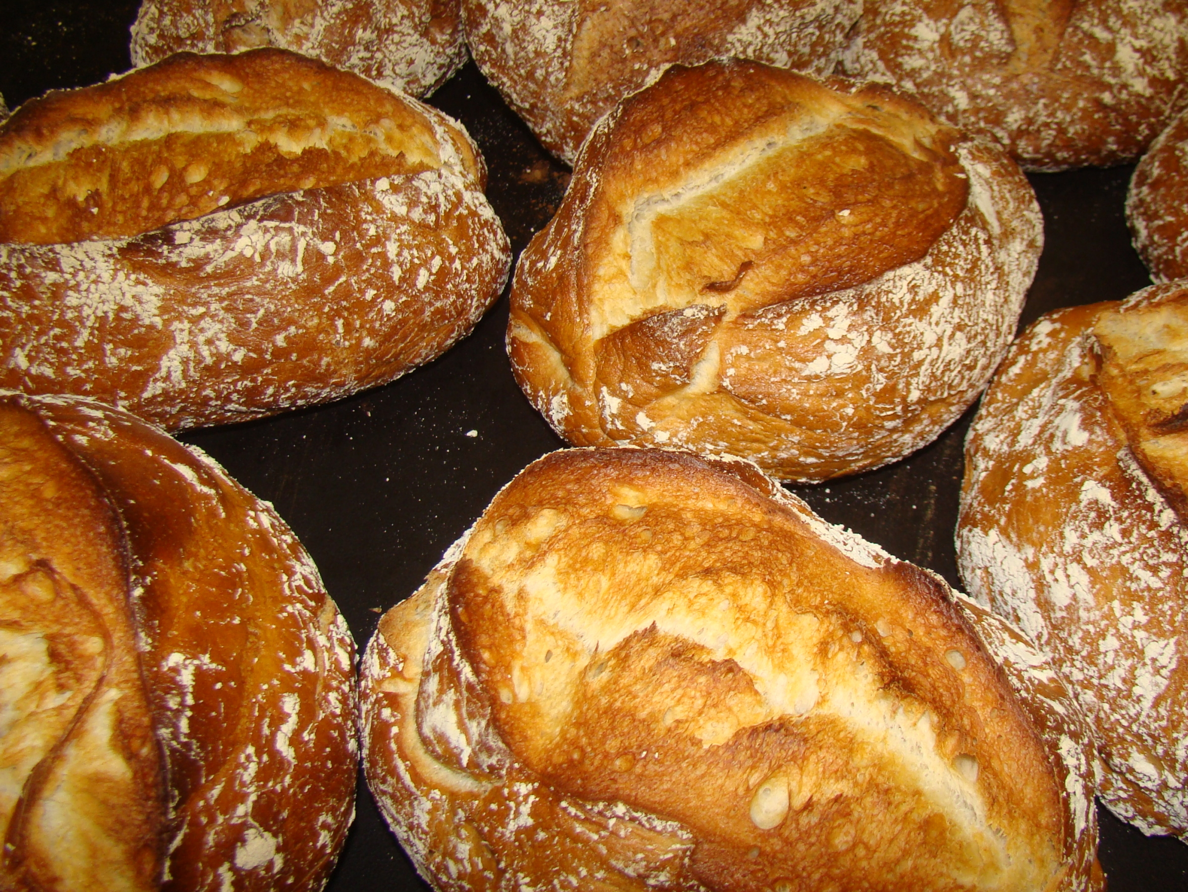 ONS BROOD SMAAKT ZOALS BROOD SMAKEN MOET!